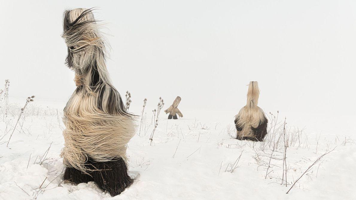 Kukeri de inverno