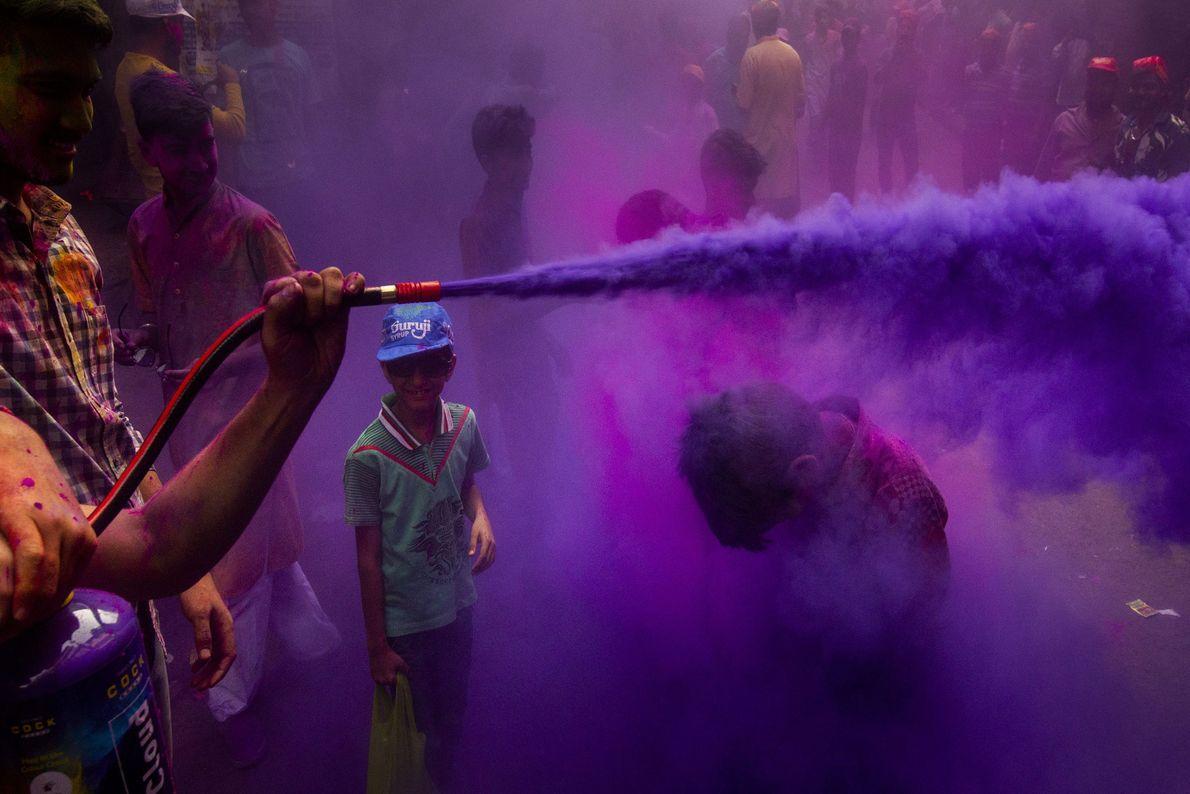 Festa púrpura
