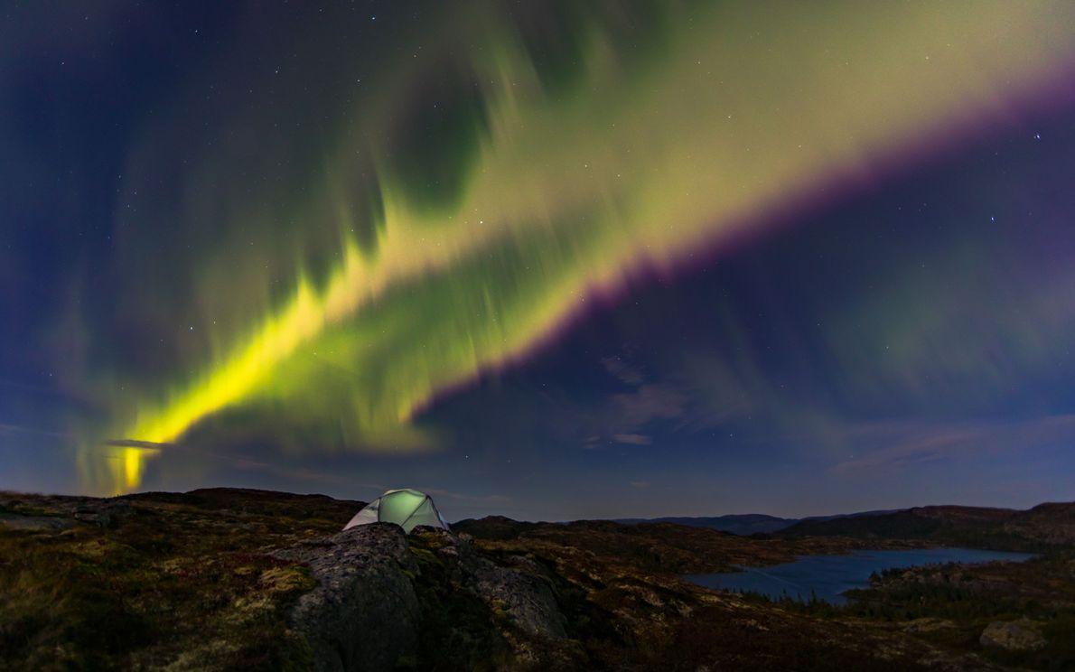 Campo com uma aurora polar ao fundo