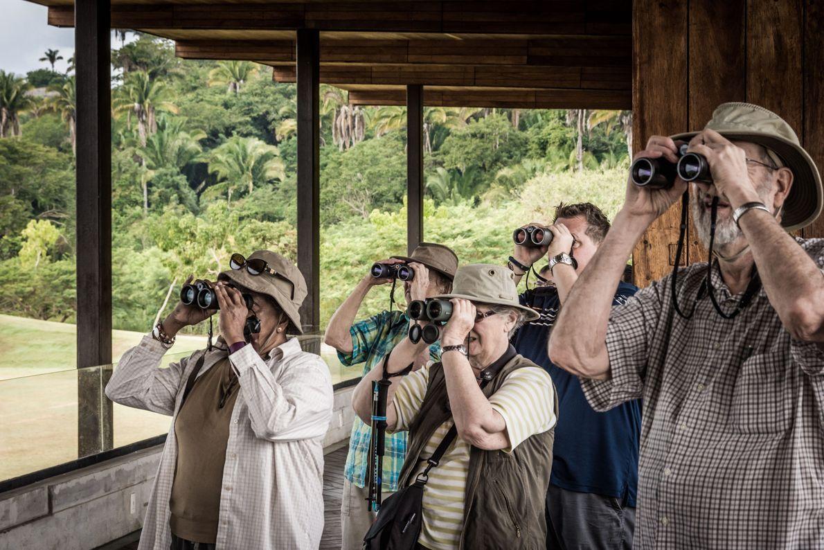 Pessoas observando pássaros