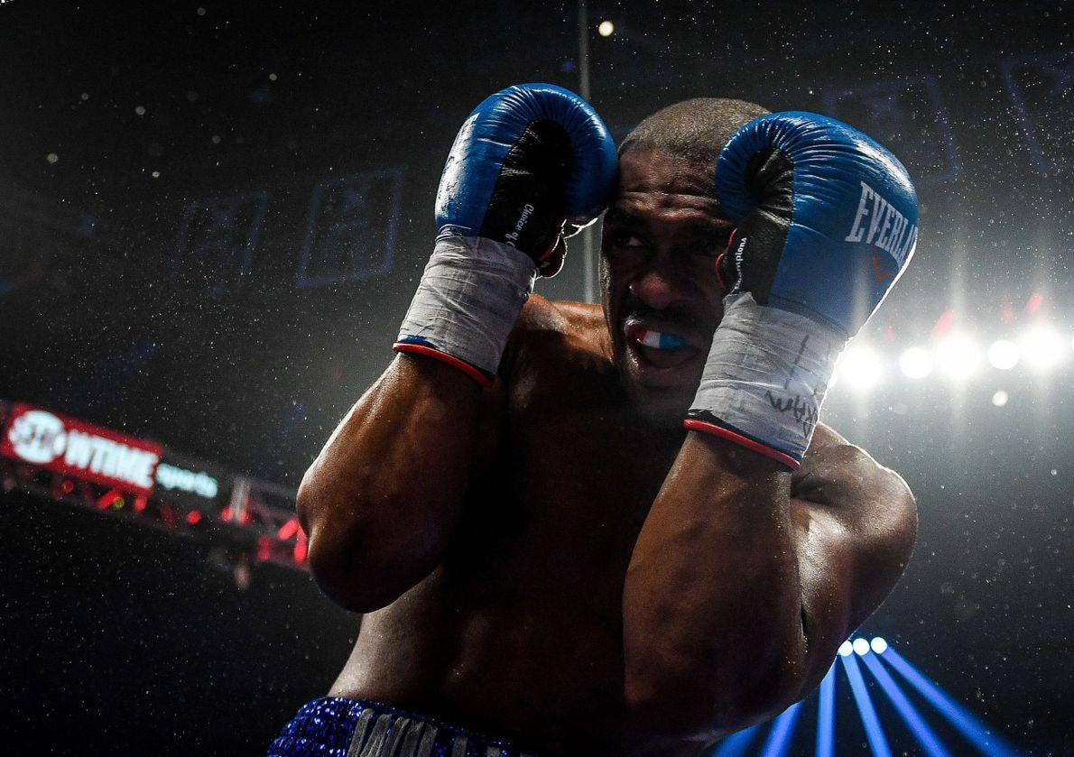 Boxeador Thomas William Jr