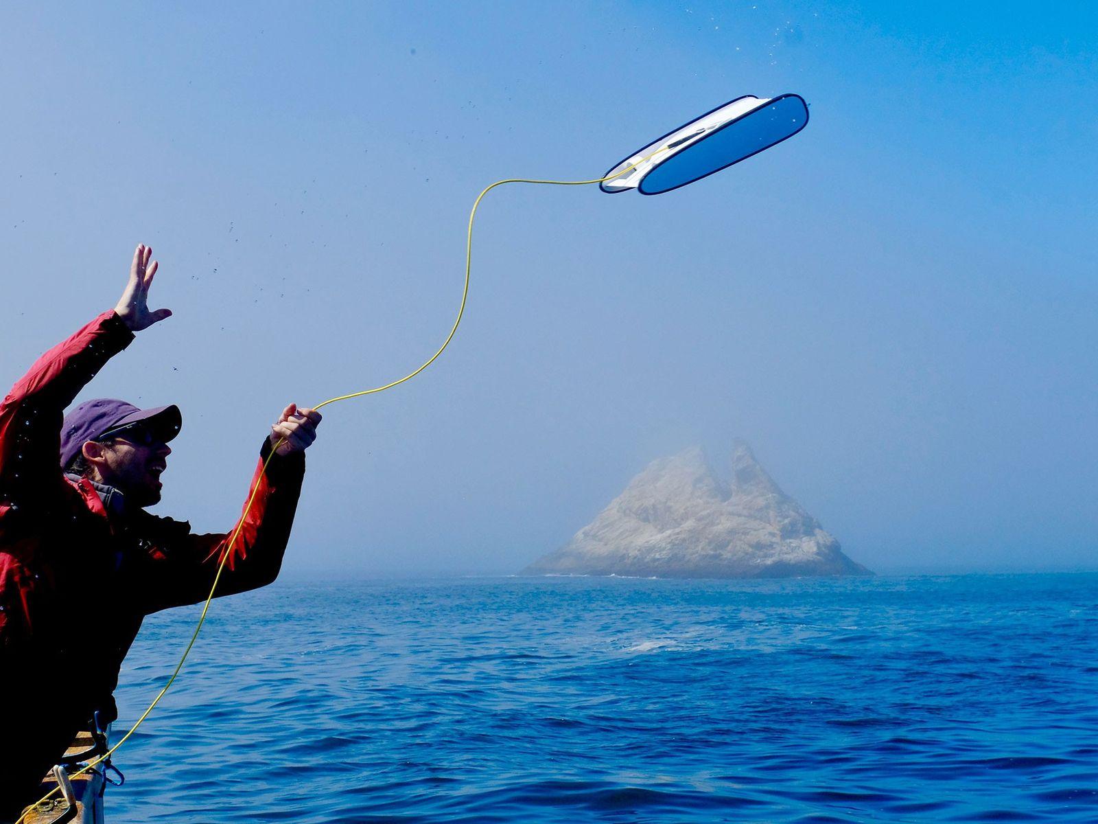 """Eric Stackpole, cofundador da Open ROV, lança um Trident nas águas do """"Shark Alley"""" (beco dos ..."""