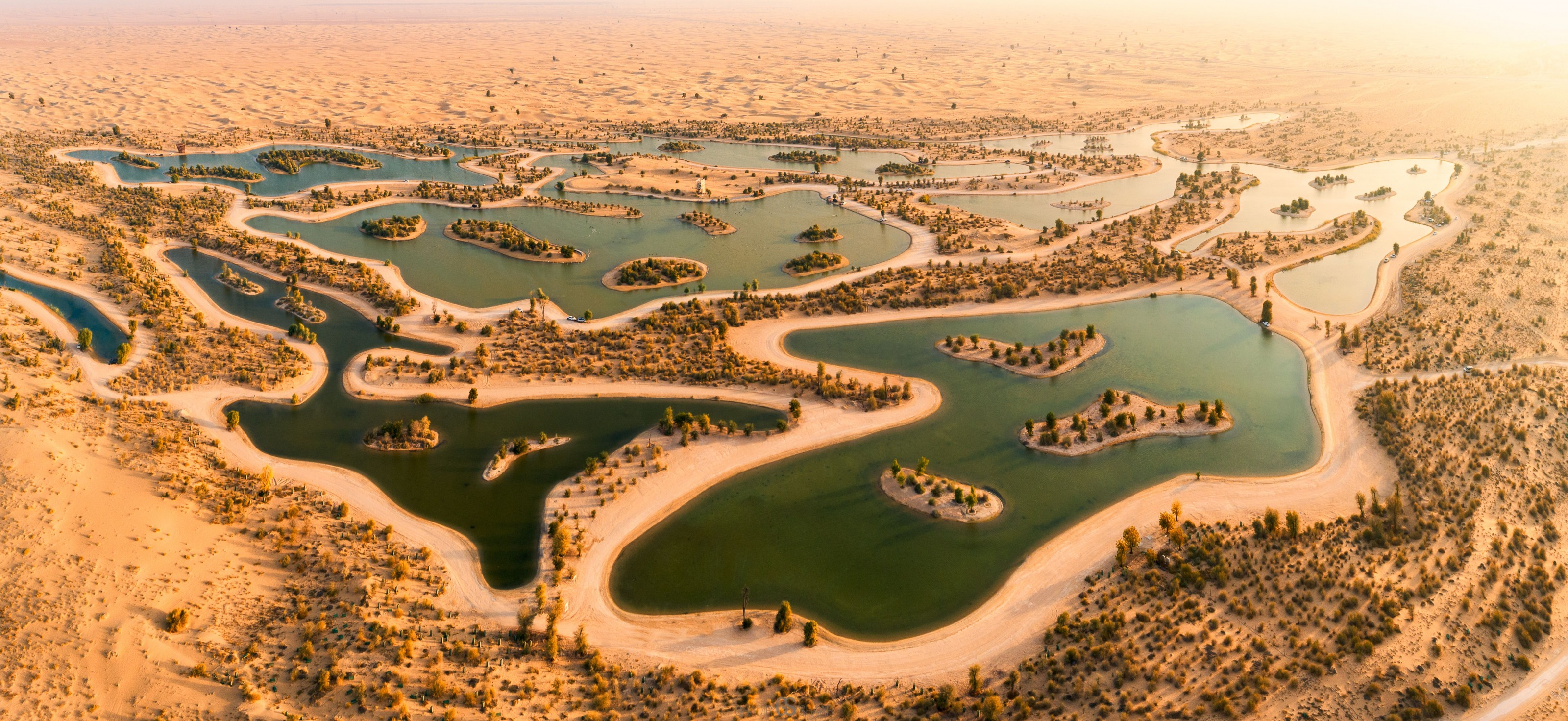 Oásis do deserto