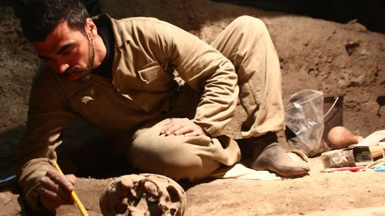 Crânio encontrado no sítio da Lapa do Santo, em Lagoa Santa, Minas Gerais