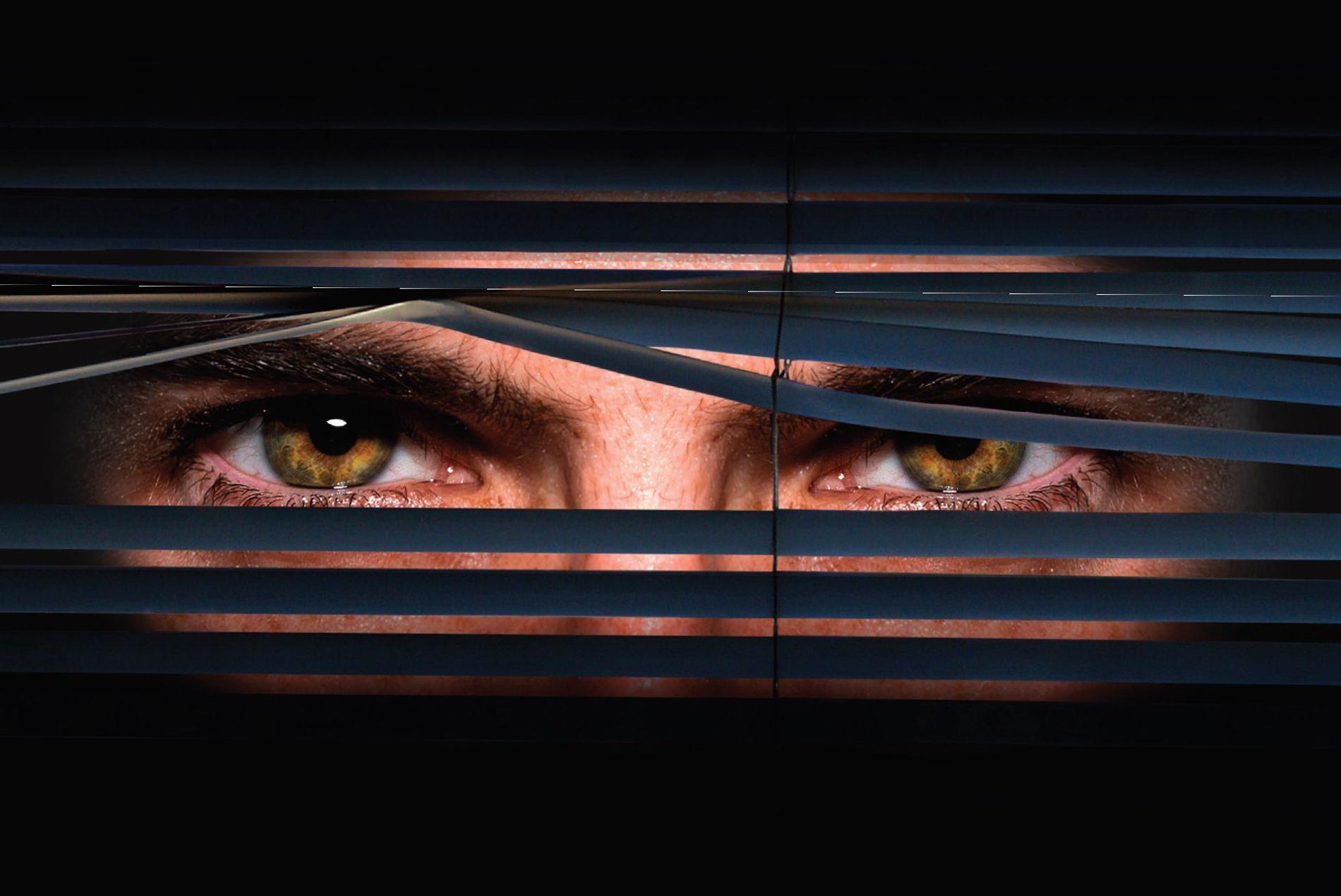 Big Brother da vida real: Estão de olho em você – e em todo o resto …