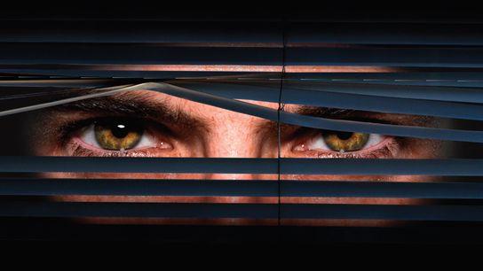 """Um olhar severo representa o Big Brother (""""Grande Irmão""""), de 1984, de Geroge Orwell, uma das ..."""