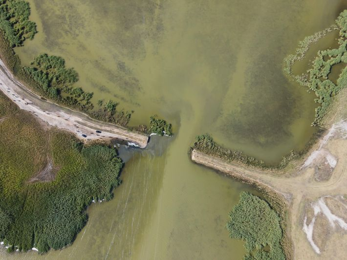 Vista aérea do rio Cogîlnic na Ucrânia após a remoção das suas barragens.
