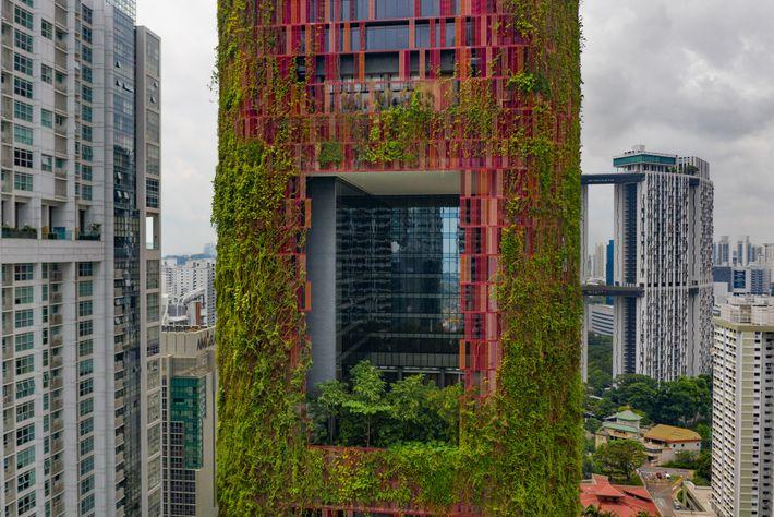 CINGAPURA – Um arranha-céu pode ser uma cidade-jardim? Cingapura subsidia jardins verticais como este no Hotel ...