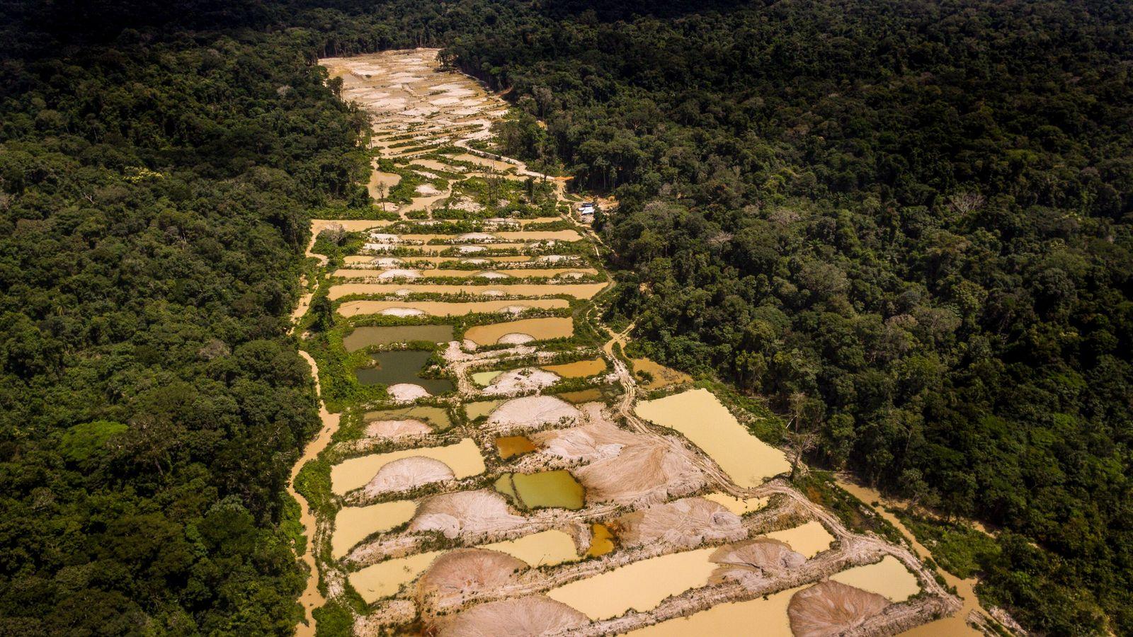 Garimpo no meio da floresta amazônica no Alto Tapajós, Pará. O ouro é extraído nos 'baixões' ...