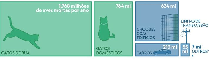 grafico quantidade de aves mortas por gatos