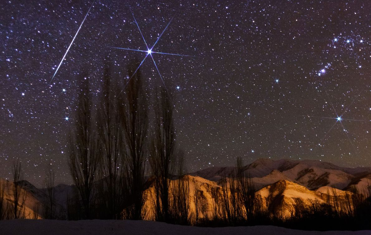 Um meteoro radiante cruza o céu próximo à estrela Sírio, durante o pico da chuva de ...