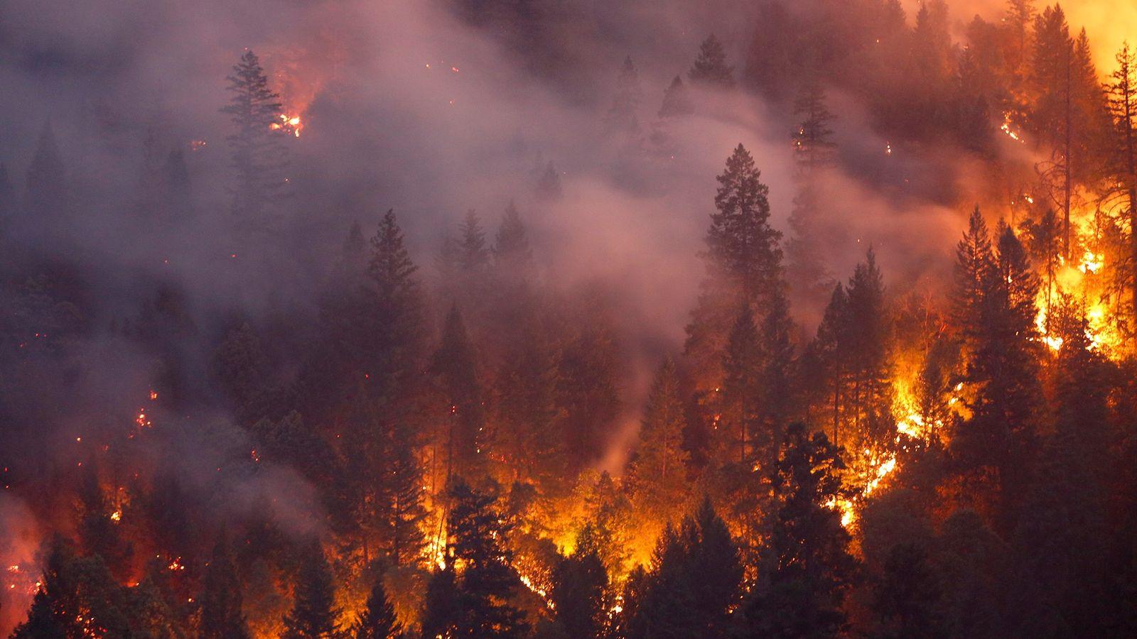 O fatal Incêndio Carr devasta floresta a oeste de Redding, Califórnia, em 30 de julho de ...