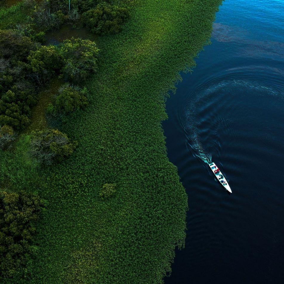 A floresta amazônica contribuiu para a 'pequena era do gelo' do século 17?