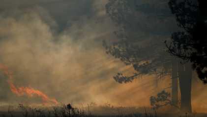 Como o clima extremo propício para incêndios tem o potencial de resfriar o planeta