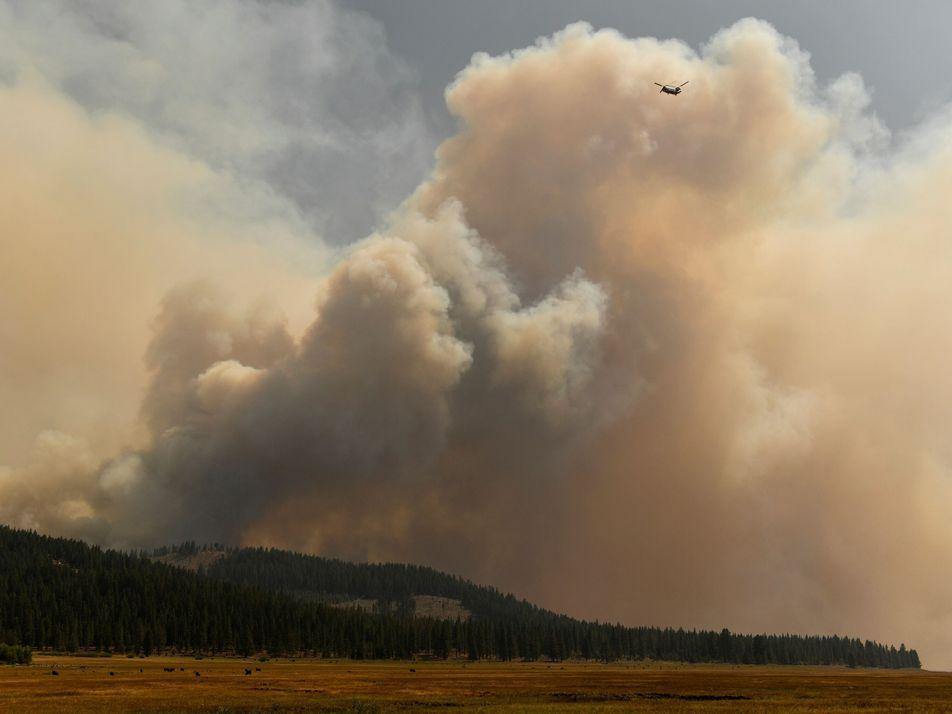 Fumaça de incêndios florestais afeta nuvens e diminui chances de chuva