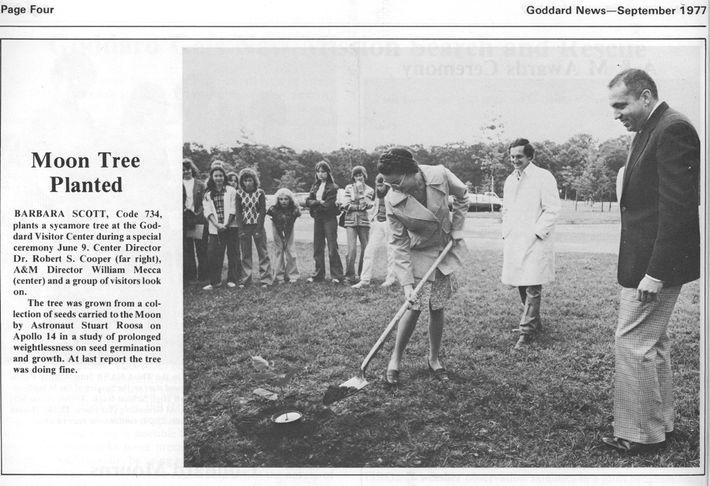 Um recorte de jornal da edição de setembro de 1977 do Goddard News  mostra a ...