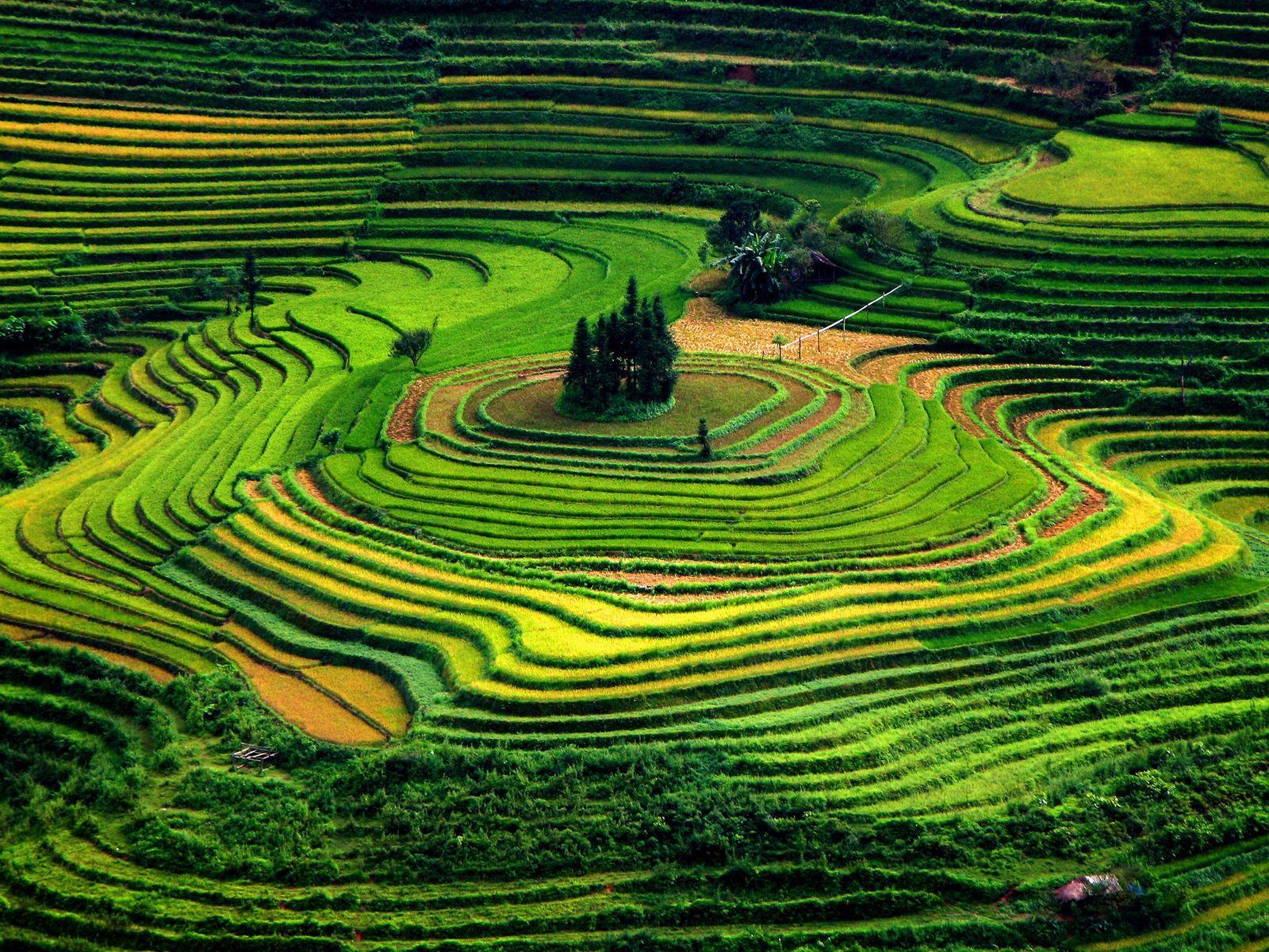 verde-terracos-vietna