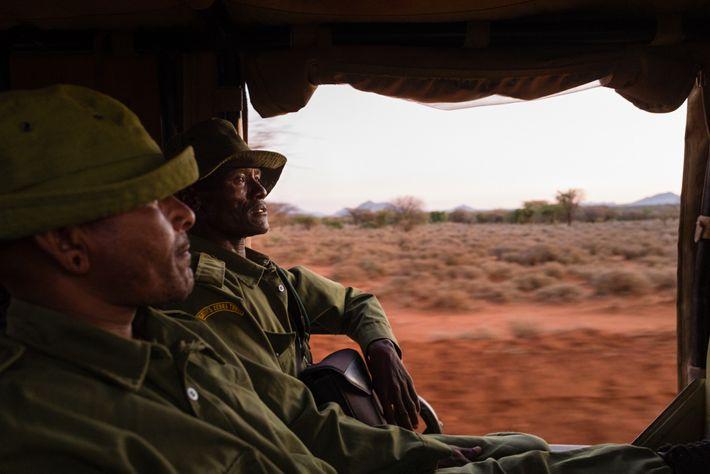 Lewarani Loidingae, à esquerda, e Lenengetai Lmantoros são embaixadores do Grevy's Zebra Trust. Treinados em segurança ...