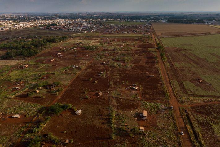 Ñu Vera, um pedaço de terra ancestral localizado fora da Reserva Indígena de Dourados, está sendo ...