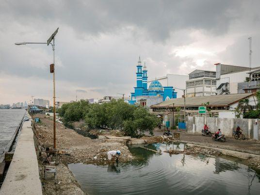 Afundamento do solo e aumento do nível do mar: uma dupla crise que afeta comunidades litorâneas