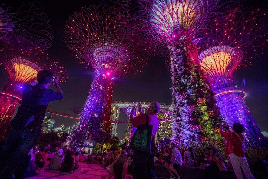As chamadas Superárvores, com luzes alimentadas por energia solar e com mais de 200 variedades de ...