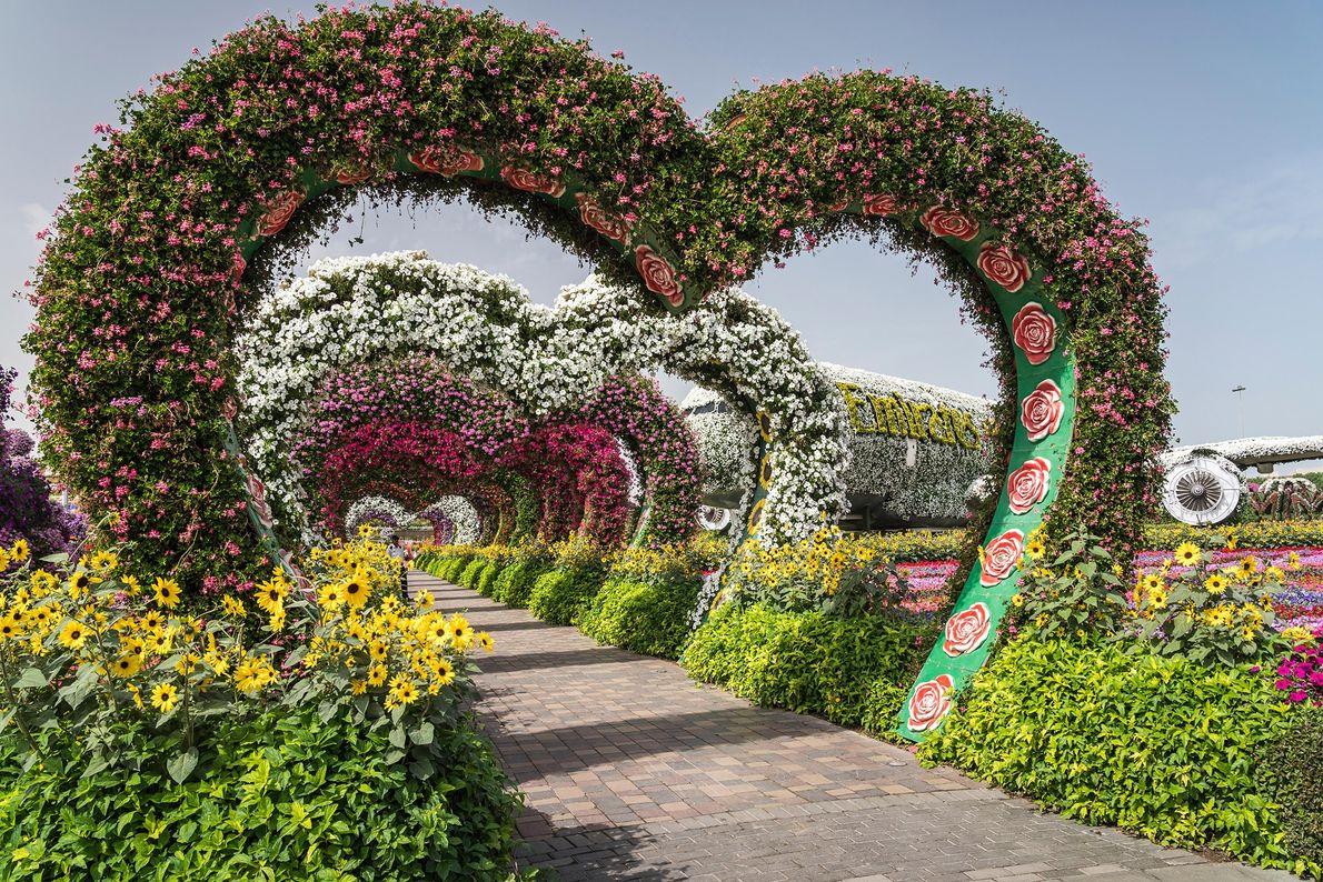 Dubai Miracle Garden, United Arab Emirates