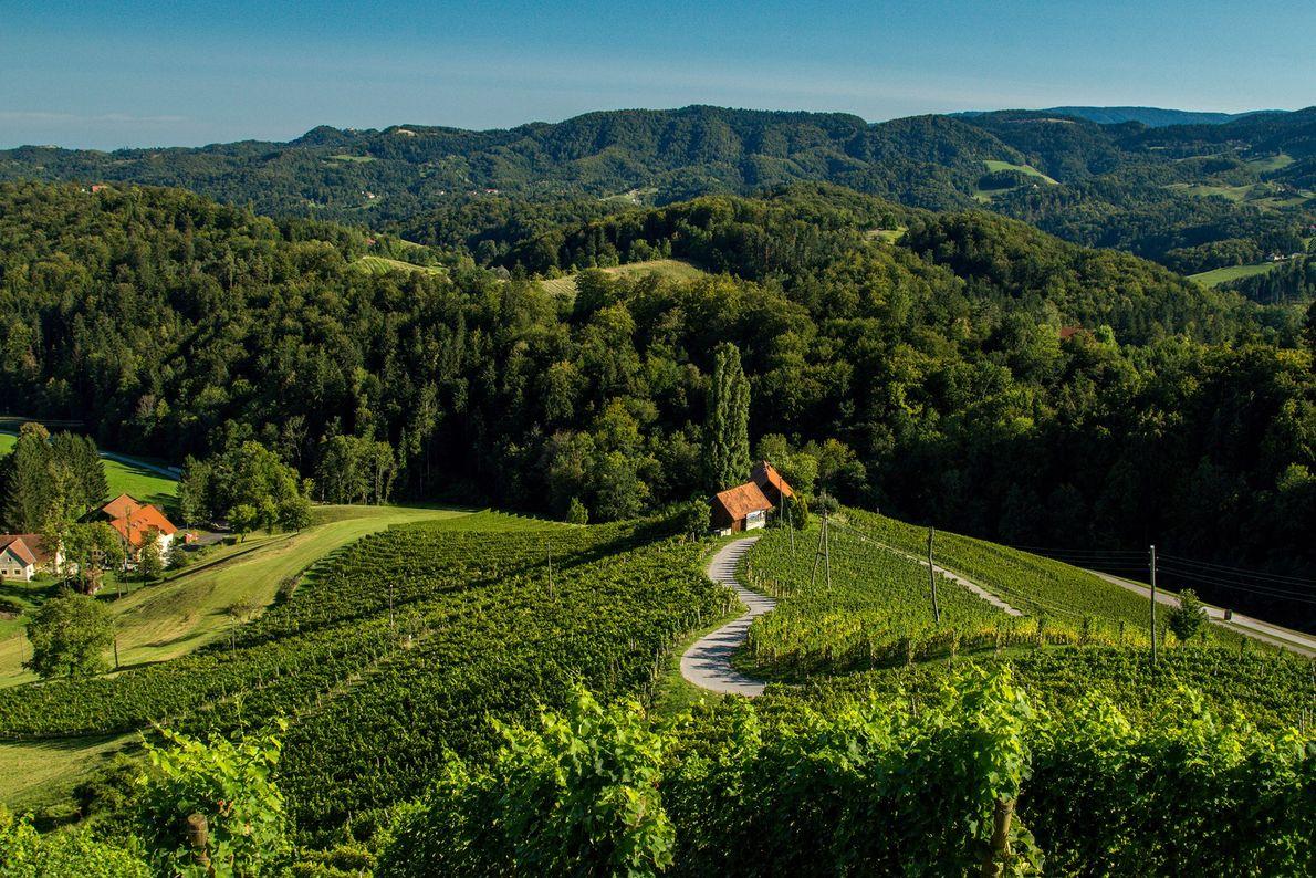 Špičnik, Slovenia
