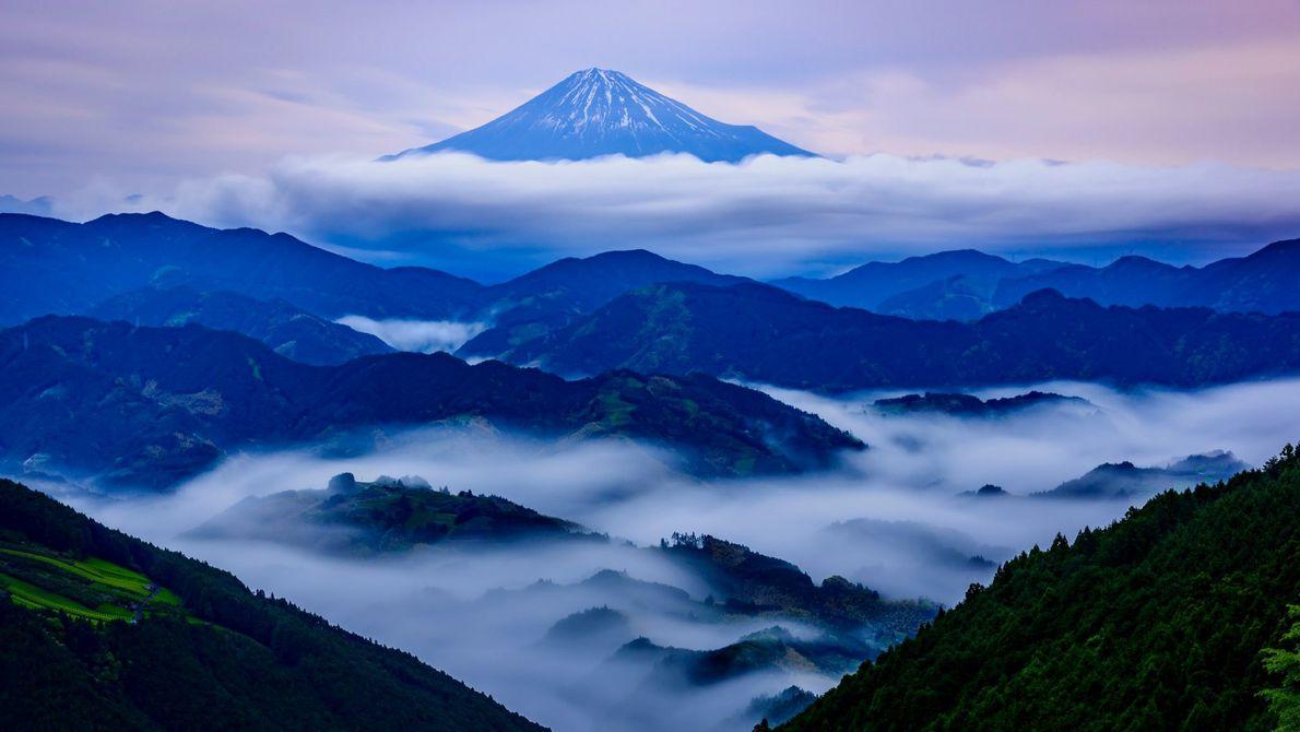 Para esta imagem, Nakazawa esperou por horas na chuva e neblina, até que uma clareira ofereceu ...
