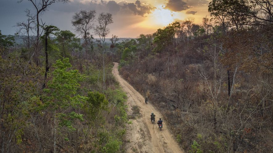 Um grupo de Guardiões da Floresta Guajajara patrulha as florestas na Terra Indígena Arariboia. Os Guardiões ...