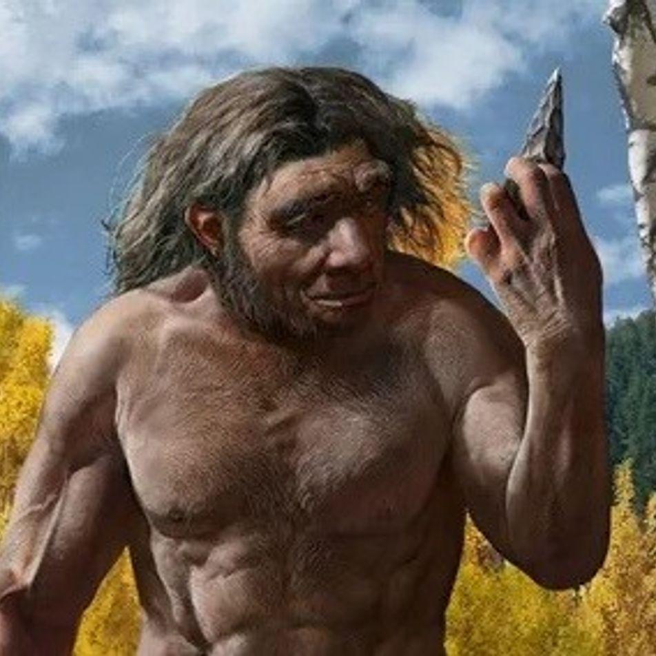 Crânio de 'homem-dragão' pode representar nova espécie e abalar árvore genealógica humana