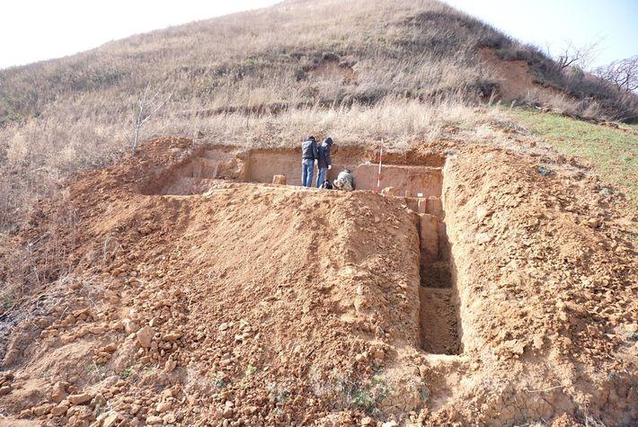 homo-erectus-china