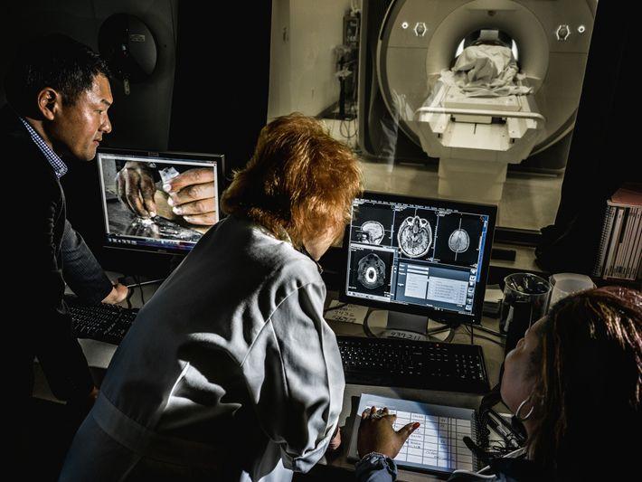 vicio-viciados-pesquisa-imagens-cerebro