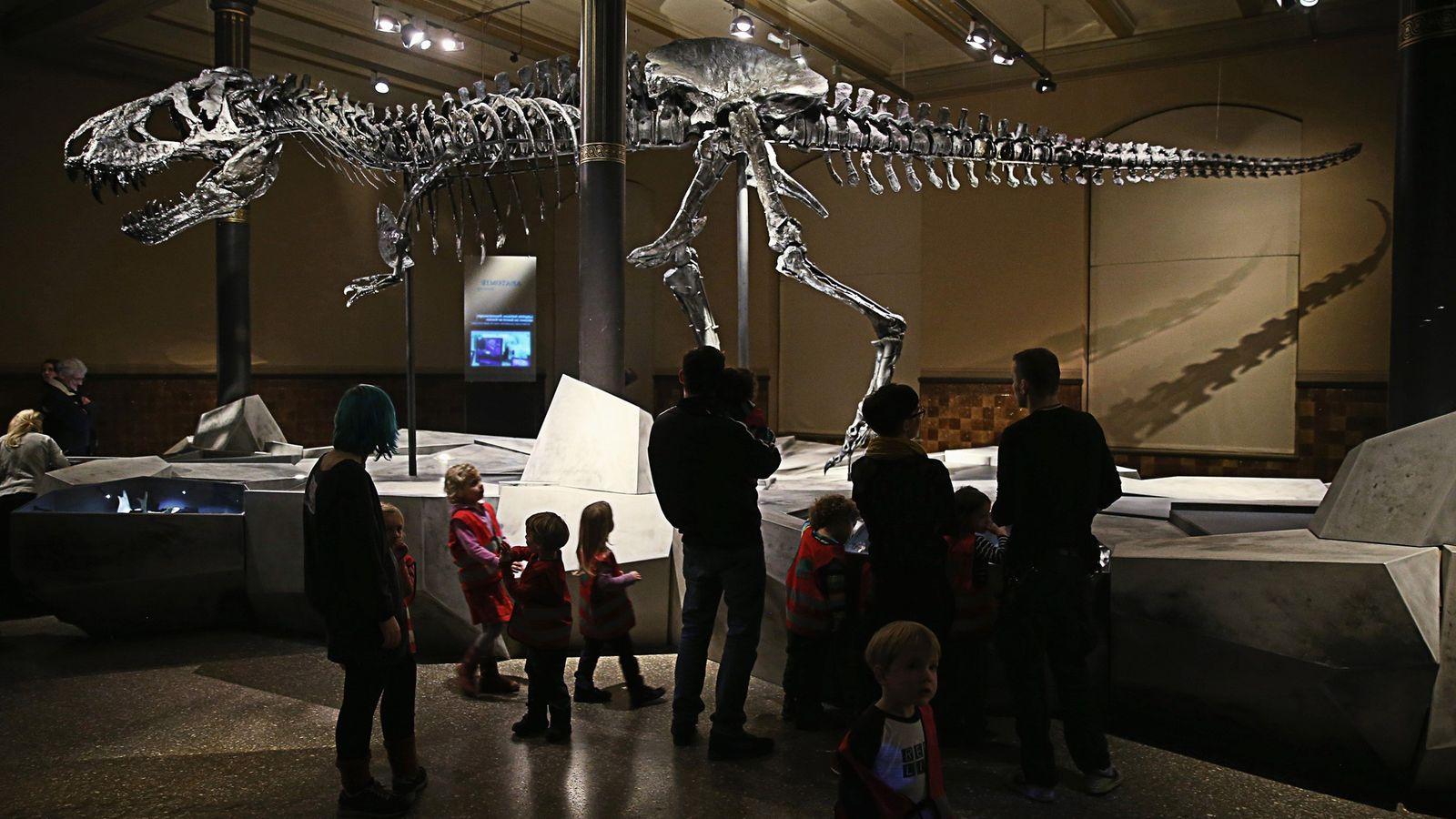 Os visitantes olham o esqueleto de Tristan, o Tiranossauro rex, um dos maiores e mais bem ...
