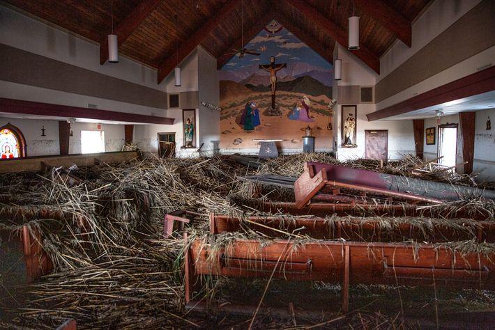 Cana-de-açúcar e lama provenientes dos pântanos encobriram a igreja católica de Santo Eugênio, em Grand Chernier, ...