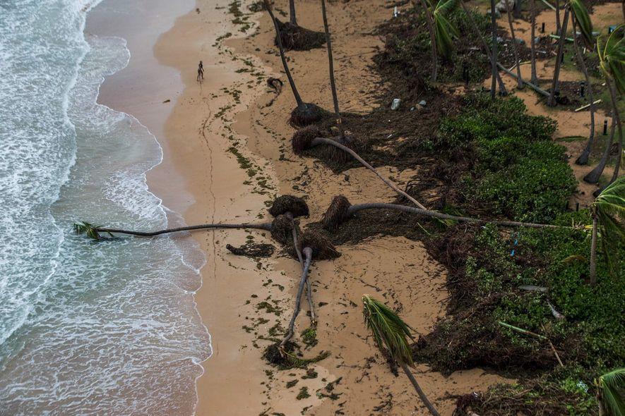 Enchentes na cidade costeira de Loiza, no norte de Porto Rico, aparecem nestas imagens feitas em ...