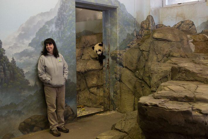 Laurie Thompson, curadora assistente de pandas-gigantes no Zoológico Nacional do Instituto Smithsoniano em Washington, D.C., fotografada ...