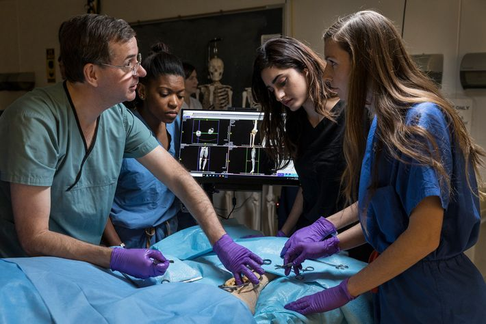 Adam Puche, professor da Faculdade de Medicina da Universidade de Maryland, mostra aos alunos como realizar ...