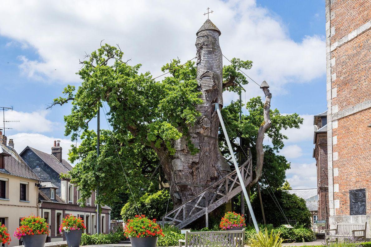 Le Chêne Chapelle: Allouville-Bellefosse, France