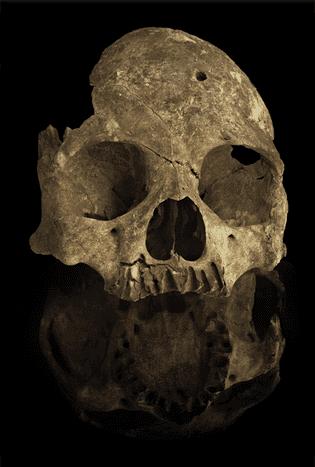 crânio povo de Luzia