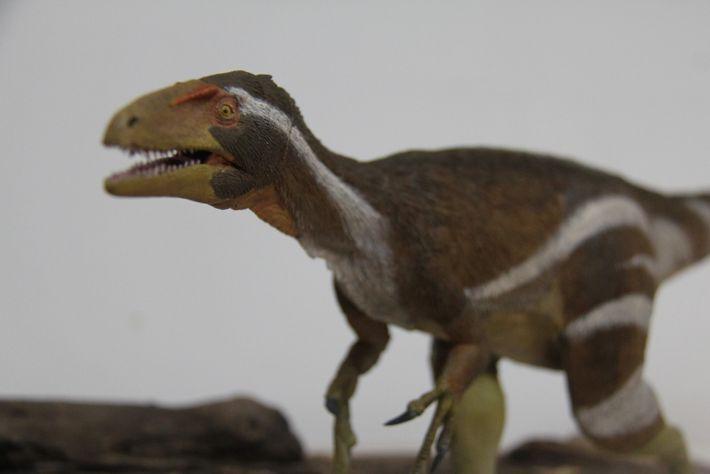 """O dinossauro mais proximamente relacionado ao Aratasaurus museunacionali (foto) está na China. """"É o Zuolong sallei, ..."""