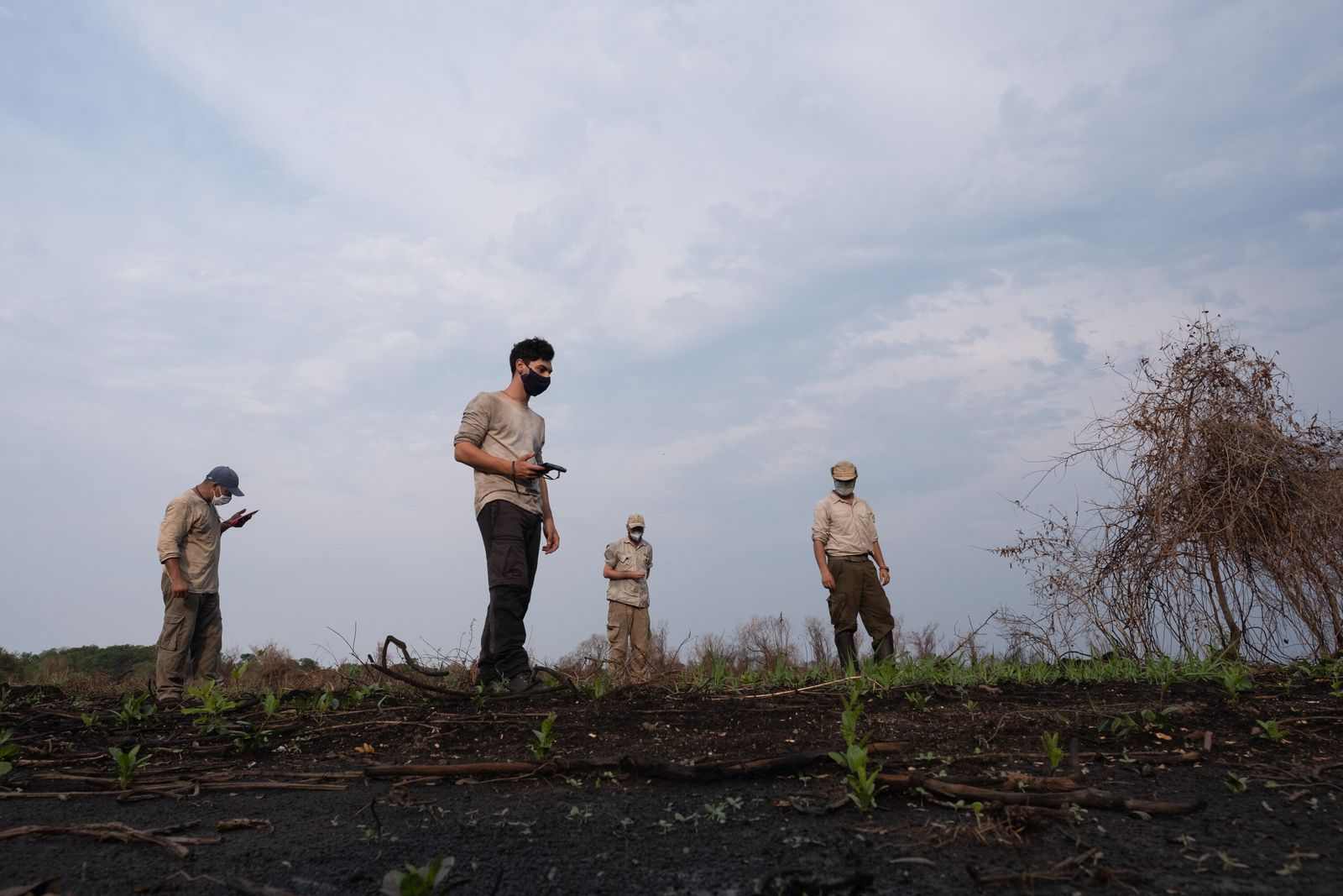 incendios-pantanal-depois-do-fogo-14