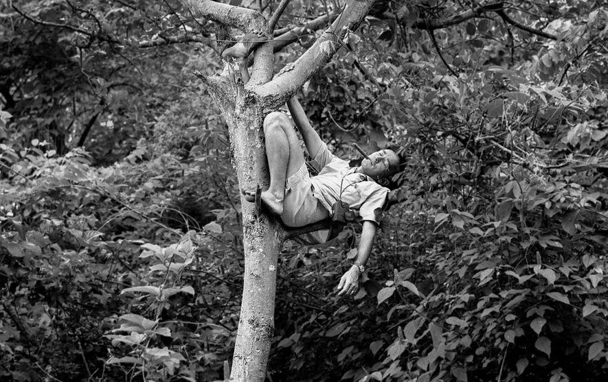 Hugo — que aqui está fumando um cigarro enquanto se pendura em uma árvore Gombe — ...