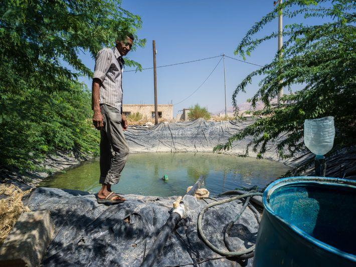 Ahmed cuida de uma piscina construída para armazenar água à agricultura no vale do Rio Jordão, ...