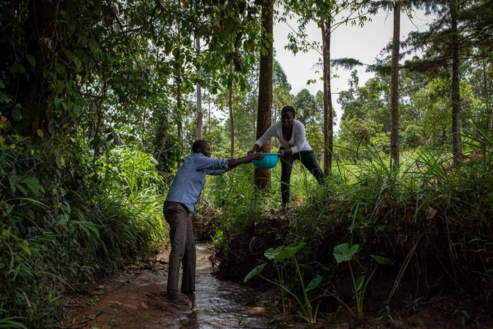 Vincent Olang' e Violet Wachiya buscam água em um pequeno rio perto da casa deles. Eles ...