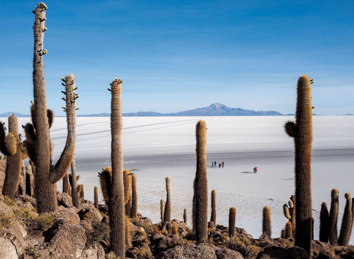 """Incahuasi, a """"Casa do Inca"""", na língua quéchua, era uma ilha no passado, quando havia ali ..."""
