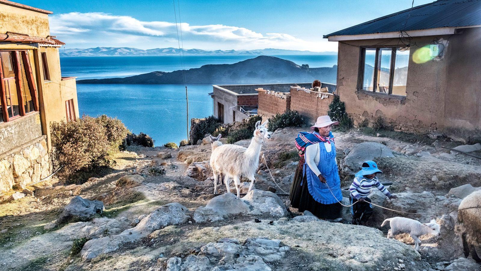 Um pastor leva seu rebanho de volta para casa na vila Yumani, em Isla del Sol, ...
