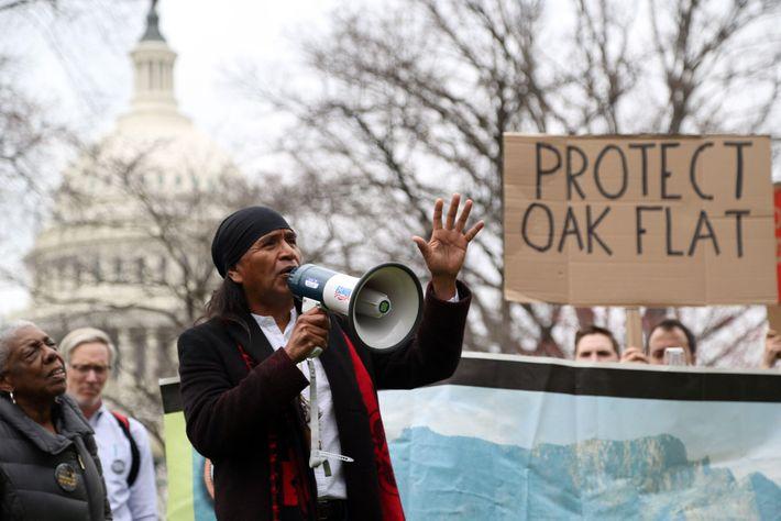 march-save-oak-flat
