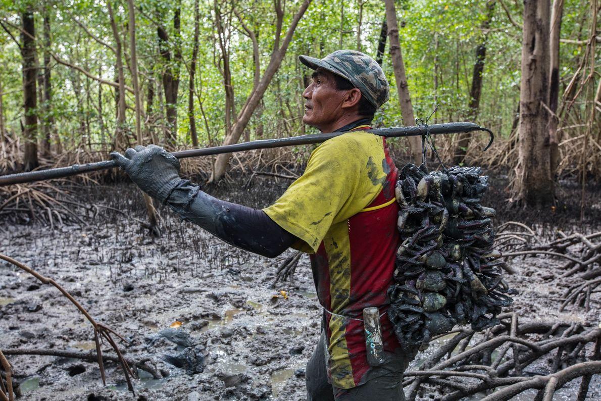 O pescador Reginaldo da Silva carrega a produção do dia em 'cambadas', na comunidade de Tamatateua, na ...