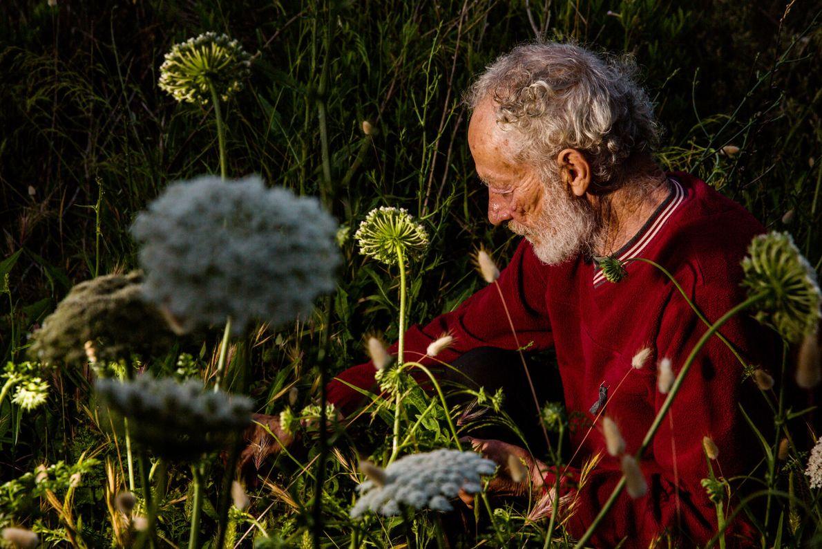 mauro-colhe-ervas-plantas-ilha-budelli-italia