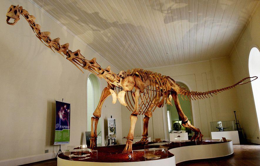 Réplica do dinossauro Maxakalisaurus topai, exposto no Museu Nacional, no Rio de Janeiro, em 2006.